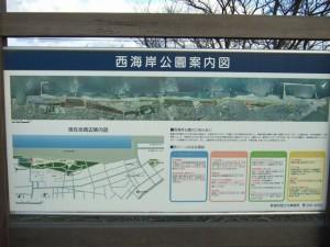 日和山浜公園5
